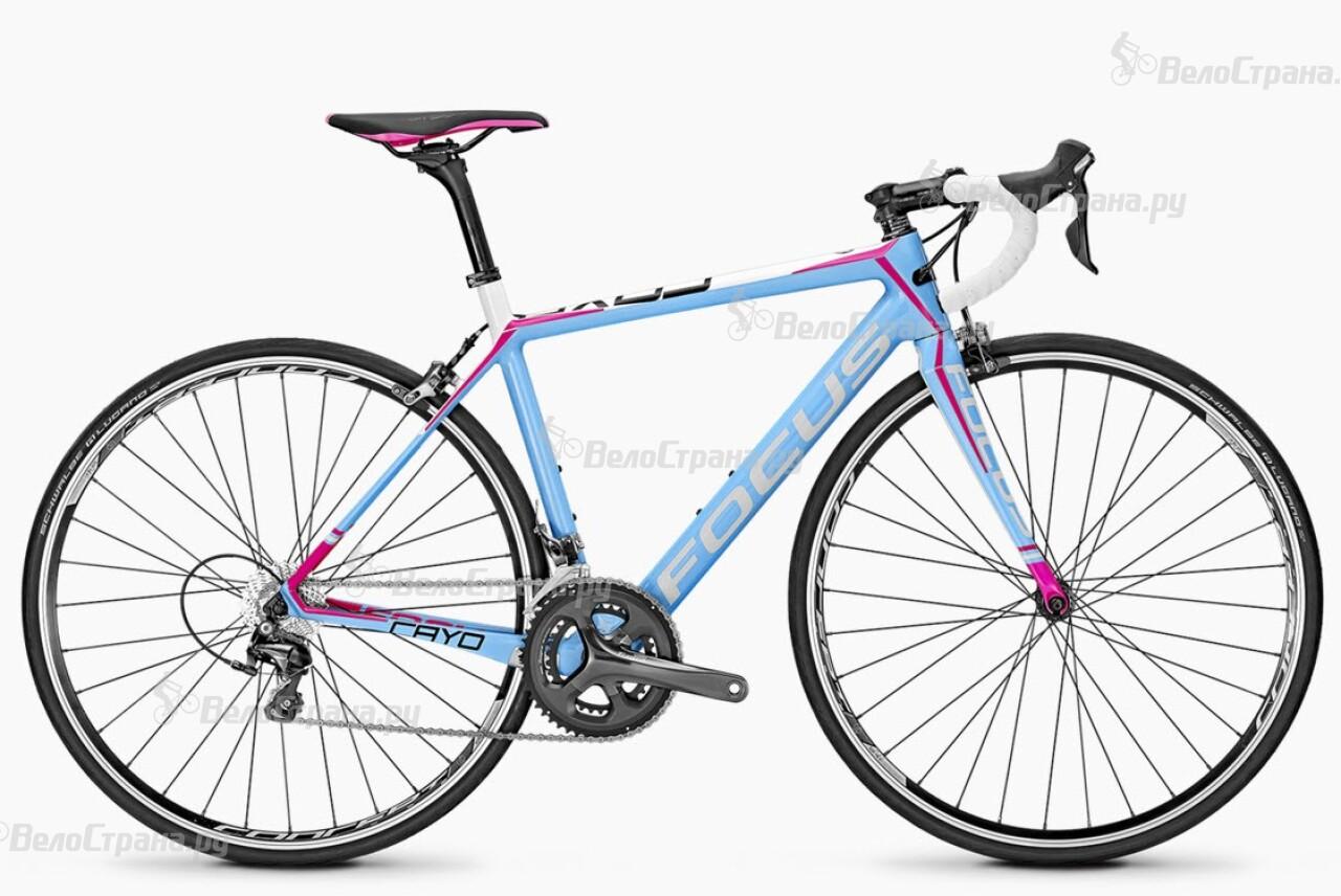 Велосипед Focus CAYO DONNA TIAGRA (2016) велосипед focus donna 2 0 2014