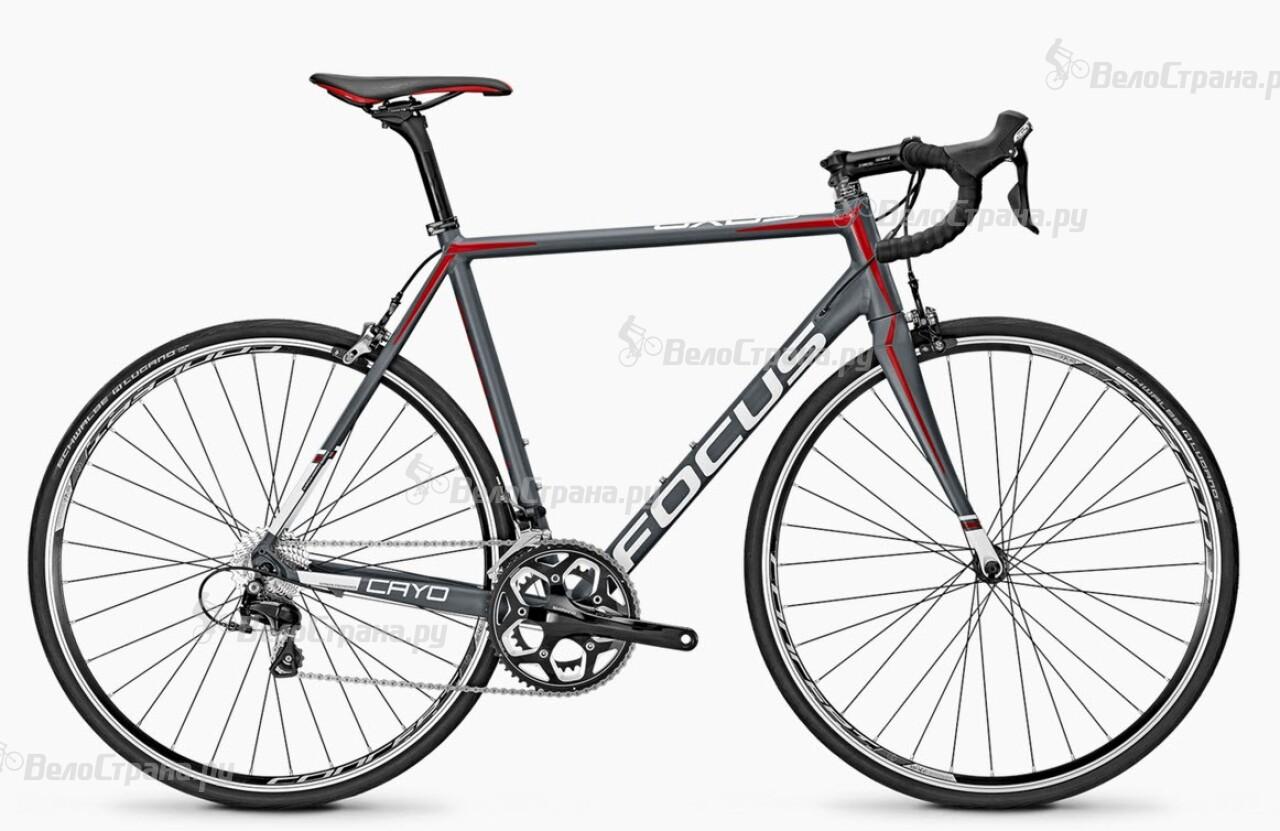 Велосипед Focus Cayo Al 105 (2016) велосипед focus cayo evo 1 0 2014