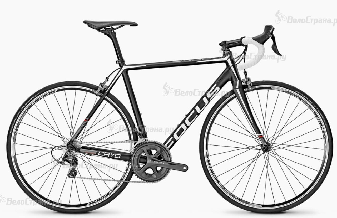 Велосипед Focus Cayo Al Ultegra (2016) велосипед focus cayo evo 3 0 2014