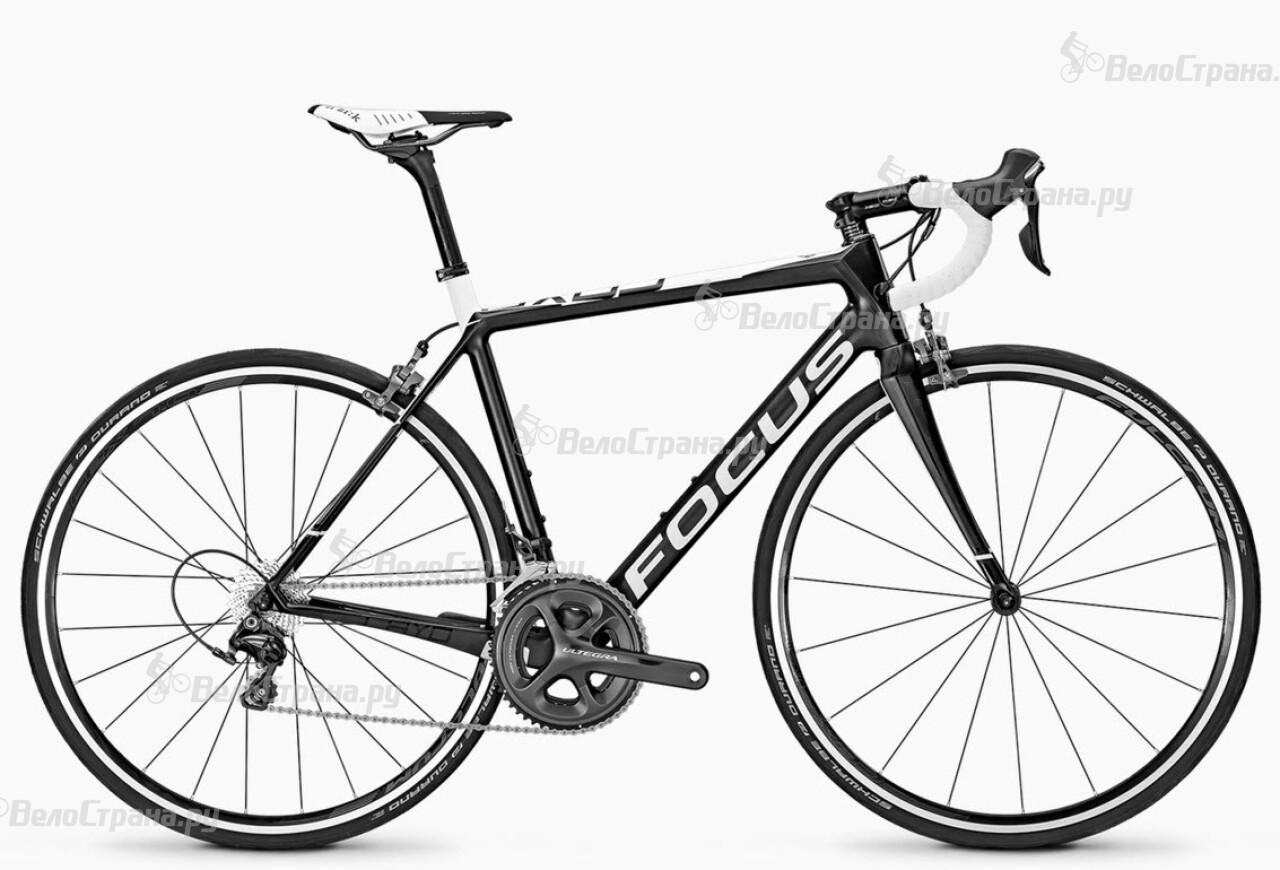 Велосипед Focus Cayo Ultegra (2016) велосипед focus cayo evo 1 0 2014