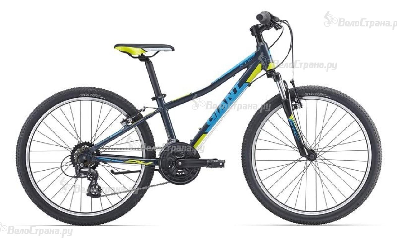 Велосипед Giant XtC Jr 1 24 (2016) велосипед giant xtc 7 2014
